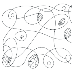 Squiggle Line